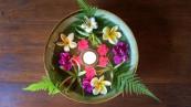 Radiance Retreat Bali 2018