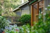 outdooreatingamarant